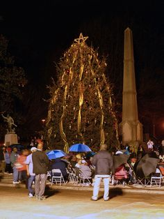 Christmas in Birmingham by Dystopos, via Flickr. Birmingham's Christmas tree about an hour before its official lighting. In Linn Park in downtown Birmingham, Alabama.