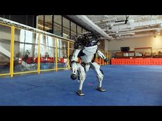 (1) Do You Love Me? - YouTube Machine À Café Delonghi, Dance Like This, Boston Dynamics, I Love You, My Love, Robot Design, Thing 1, Happy Year, New Year Greetings