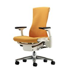 Embody® Work Chair: The chair I'm being told to go try by 'them'