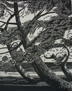 "Queensland based artist Jennifer Rogers woodengraving ""Southerly"" 15/25, $255"