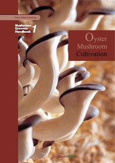 Mushroom Growers Handbook 1 Oyster Cultivation A great book, all set out for easy growing of this marvelous mushroom. Growing Mushrooms At Home, Garden Mushrooms, Edible Mushrooms, Stuffed Mushrooms, Wild Mushrooms, Oyster Mushroom Cultivation, Mushroom Spores, Tempura, Sashimi