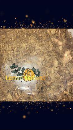 Yellow Large Skull Figure Image Candle Success, Road Opener, Communication, Friendship, Spells, Spellwork /& Ritual Magic