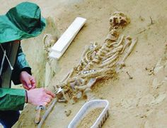 Remains of a young Lombard warrior, buried with his horse (6th century CE) found near Moncalieri, Piedmont. The cause of death of the warrior, who was between 20 and 25 years old, has been established: a septicemia due to a dental abscess neglected.