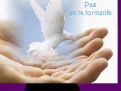 PAZ EN LA TORMENTA  - Dr. Ernesto Contreras (Serie Cantos)