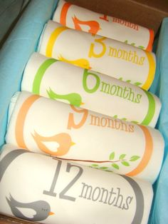 Perfect Baby Shower Gift! Onesies by month!