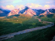 Denali National Park is another place I was fortunate to visit once in my life.  I have to go back.  Way too much stuff to do for one visit!