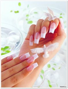 Beauty News (nails)