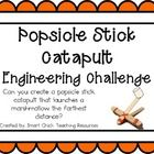 Popsicle Stick Catapult: Engineering Challenge Project ~ Great Stem Activity