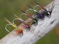 Galeria de moscas