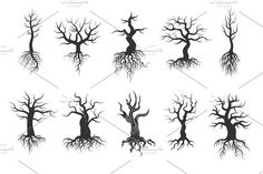 Old tree vector silhouettes with roots vector set  @creativework247