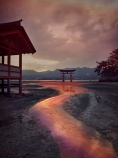 Golden curves by Dekka Entwistle Japan Landscape, Sea Of Japan, Turning Japanese, Island Nations, Cultural, Hiroshima, Small Island, Japan Travel, Beautiful World
