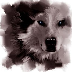 """$1200; """"Spirit of the White Wolf"""" Digital Painting © Victoria Antoine-Fisher"""