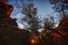 Mountain Autumn Sunset  @yourtake #greencanyon #mountain #cliff #sunset #trees #cachevalleyutah #goldenhour