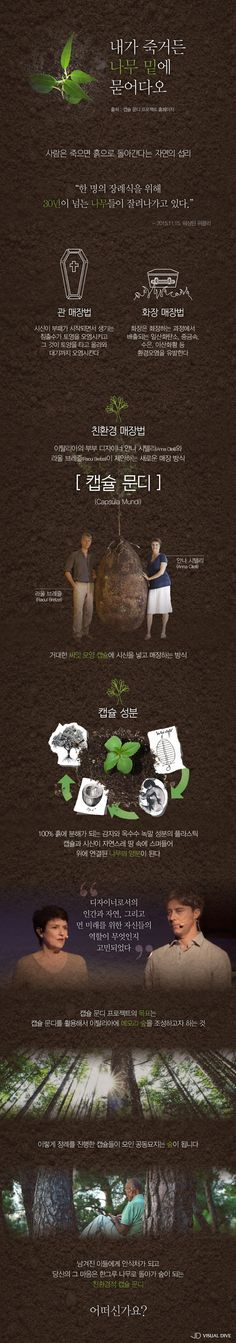 친환경적 매장 '캡슐 문디 프로젝트', 자연과 인간을 위한 장례법 [인포그래픽] #CapsulaMundi / #infograhpic ⓒ 비주얼다이브 무단 복사·전재·재배포 금지