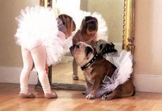 Little ballerina and dog by Crickets Performing Arts in Manaheim, PA