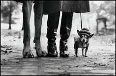 USA. New York. 1974. Felix, Gladys und Rover.  © Elliott Erwitt / Magnum Photos