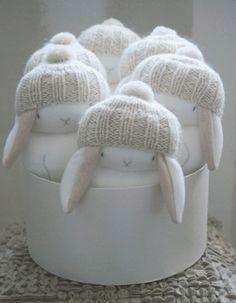 mucmuc bunnies