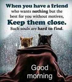 Top 30+ Good Morning Beautiful Images With Quotes - BasForum