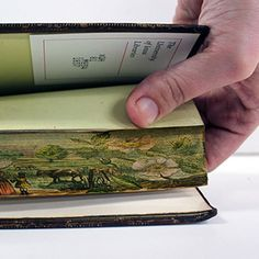 A fore-edge painting is a technique of painting on the edges of the pages of a book. The artwork can only be seen when the pages are fanned...