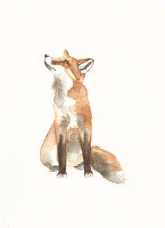 Wc fox
