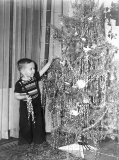 Vintage Holiday: It's not an official Christmas tree until the Icicles are on, one strand at a time - thank you very much. Vintage Christmas Photos, Retro Christmas, Christmas Love, Vintage Holiday, Christmas Pictures, Christmas Holidays, Christmas Trees, Xmas, Antique Christmas