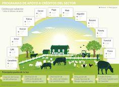 La Ley de reactivación agropecuaria frenaría el acceso al financiamiento