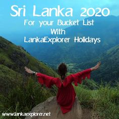 (19) Home / Twitter Holiday Destinations, Sri Lanka, Tours, Adventure, Twitter, Book, Places To Travel, Livres, Fairytail
