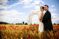 The Poppy Field, by Susan Jefferies