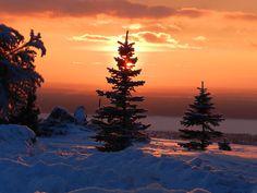 Pôr do sol no inverno.                                                       …