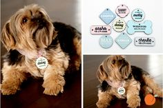 We all love our pets right? We don't want to lose them right? Grab one of these darling tags today in case your pet accidentally gets away! Personalize your favorite tag today at pickyourplum.com