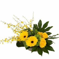 Solar Flair - A stylish design of gerbera, roses, hydrangea and oncydium orchid. Contemporary Flower Arrangements, Flower Arrangements Simple, Green Hydrangea, Mothers Day Flowers, Gerbera, Yellow Roses, Floral Design, Art Floral, My Flower