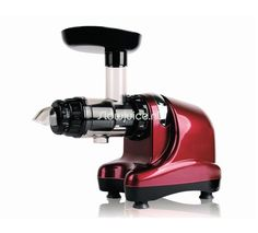 Find Oscar Juicers at Juiceland™ Food Equipment, Kitchen Equipment, Machine A Jus, Juice Extractor, Sorbets, Kitchen Aid Mixer, Kraut, Unique Home Decor, Raw Food Recipes