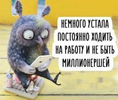 Funny Qoutes, A Funny, Hilarious, Dark Sense Of Humor, Day Wishes, Butterfly Art, Cool Pets, Animal Quotes, Adult Humor