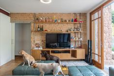 Casa Azul   Galeria da Arquitetura Estilo Tropical, Interior Exterior, Dogs, 35, Timber Deck, Red Cabinets, Room Kitchen, Lighting Design, Home Layouts