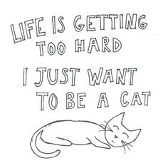 """""""Life is getting too hard... I just want to be a cat!"""" xD"""