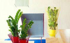 9 besten ungiftige pflanzen f r katzen bilder auf pinterest. Black Bedroom Furniture Sets. Home Design Ideas