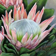 Watercolor Flowers, Watercolor Art, Painting Flowers, Protea Art, Blue Flower Wallpaper, Australian Native Flowers, Watercolor Painting Techniques, King Art, Rare Flowers