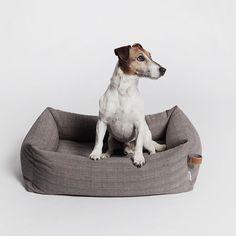 modern dog bed - Google zoeken
