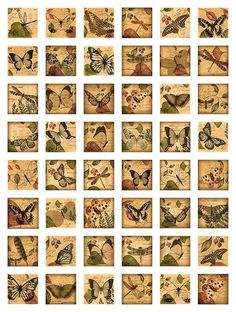 Dragonflies Butterflies Woodland Theme Squares by pixeltwister Journal Stickers, Scrapbook Stickers, Scrapbook Paper, Bullet Journal Vintage, Herbalife Shake Recipes, Snapchat Stickers, Journal Aesthetic, 3d Prints, Scrapbook Journal