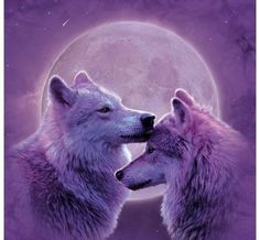 Wolves #wolf #wolves #nativeamerican