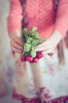 radishes #moestuin #groeien