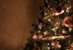 ISO settings for a perfect picture of your Christmas tree!