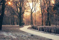 Wroclove in winter. by Lukreszja