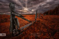 Autumn marsh by Tuomo Arovainio / (Finland) Tree Mushrooms, Picture Places, Old Fences, Finland, Awesome, Amazing, The Good Place, Beautiful Places, National Parks
