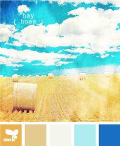 hay hues