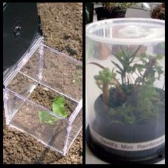Neat ways to reuse cd cases.