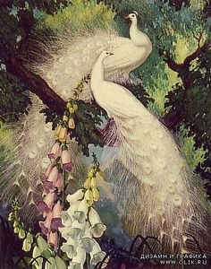 Jessie Arms Botke - white peacocks and hollyhocks. Peacock Quilt, Peacock Decor, White Peacock, Peacock Bird, Peacock Images, Motifs Animal, Peacock Painting, Wildlife Art, Bird Art