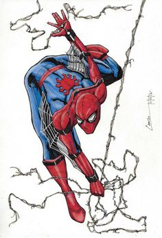 Spidey by camillo1988 on DeviantArt