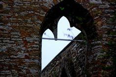 Travelling with camera obscura: Gothic travels: ruins of Piritta, Tallinn, Estonia.