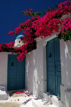 Santorini village house bougainvillea